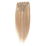 Clip on hair 40 cm #18/613 Blond Mix